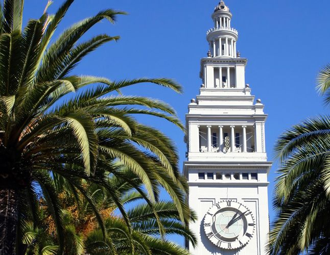 Zoe report Spotlight: What To Do In San Francisco