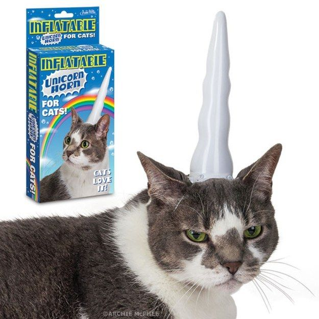 An inflatable unicorn horn for your cat. | 31 Gifts You'd Actually Want To Find In Your Christmas Stocking