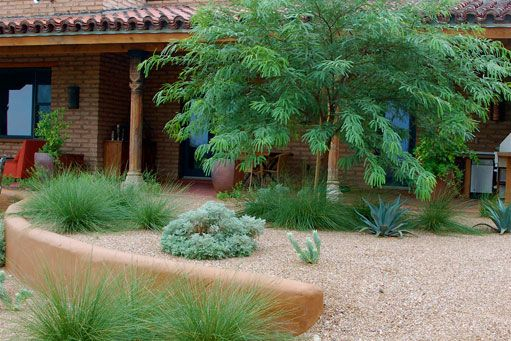65 best images about desert landscaping on pinterest for Soft landscaping ideas