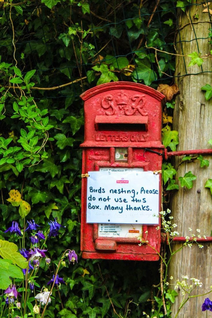 Post box in Cornwall