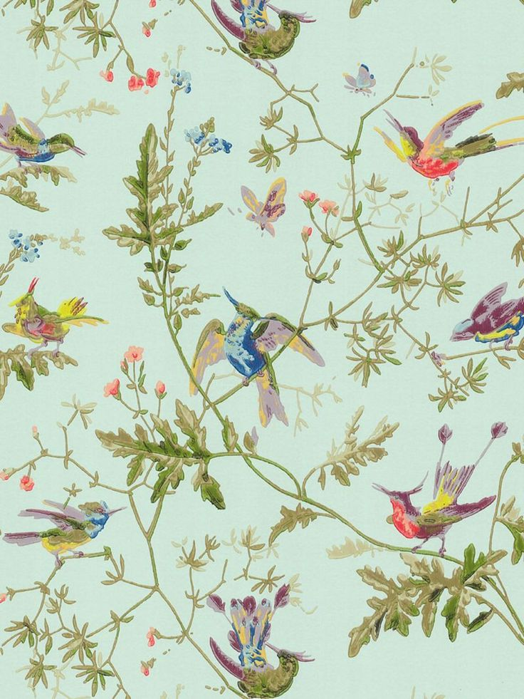 Hummingbird wallpaper (blue) by Cole and Son