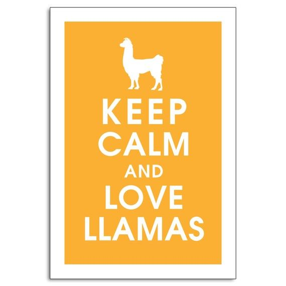 Does this remind u of someone.....: Poster Features, Dance Girls, My Life, Demons Llamas, My Heart, Keep Calm, Life Stories