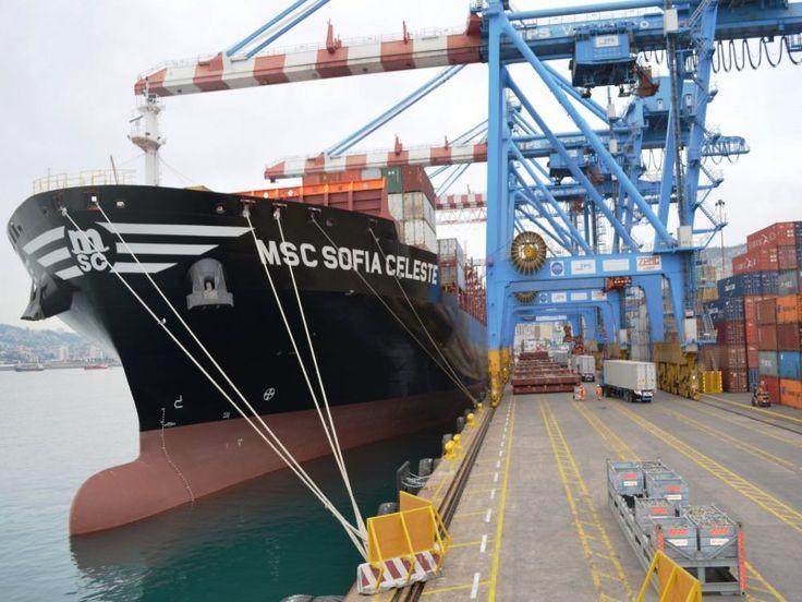 Filial de la MSC ingresa como nuevo accionista de Terminal Pacífico Sur
