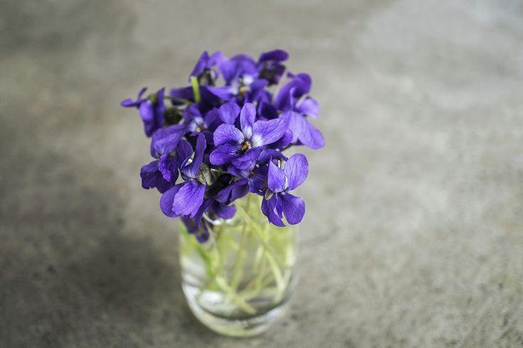 Zodiákus virág