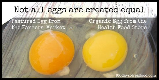 List of the various types of labels for eggs, so you can decide which kind you'll purchase for your family.