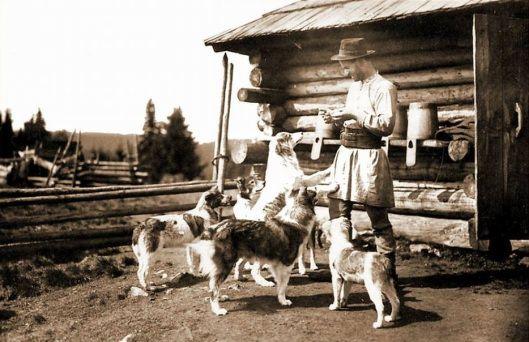 Old Romania 1920 Adolph Chevallier caini ciobanesti romanesti