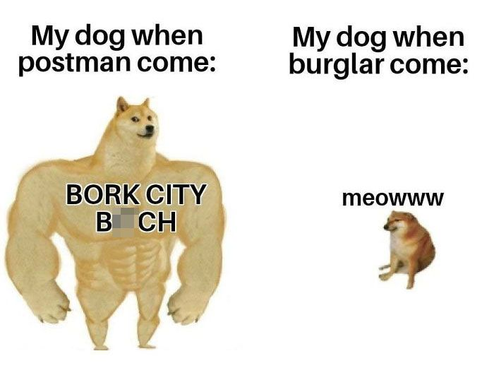 30 Of The Most Savage Yet Somewhat Accurate Then Vs Now Doge Memes Me Too Meme Haha Funny Memes