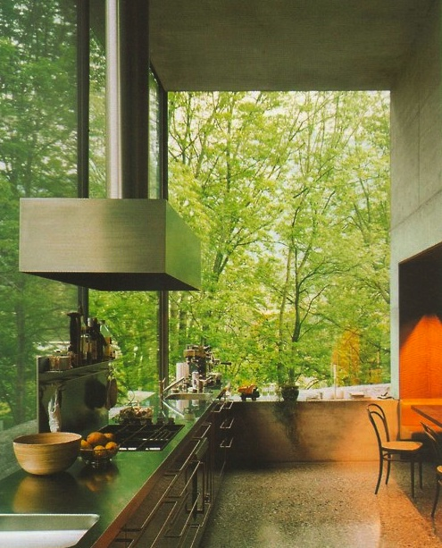 Modernist kitchen without walls