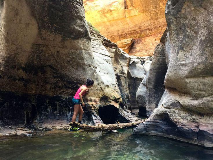 Left Fork Trailhead. Po wodzie do ukrytego kanionu
