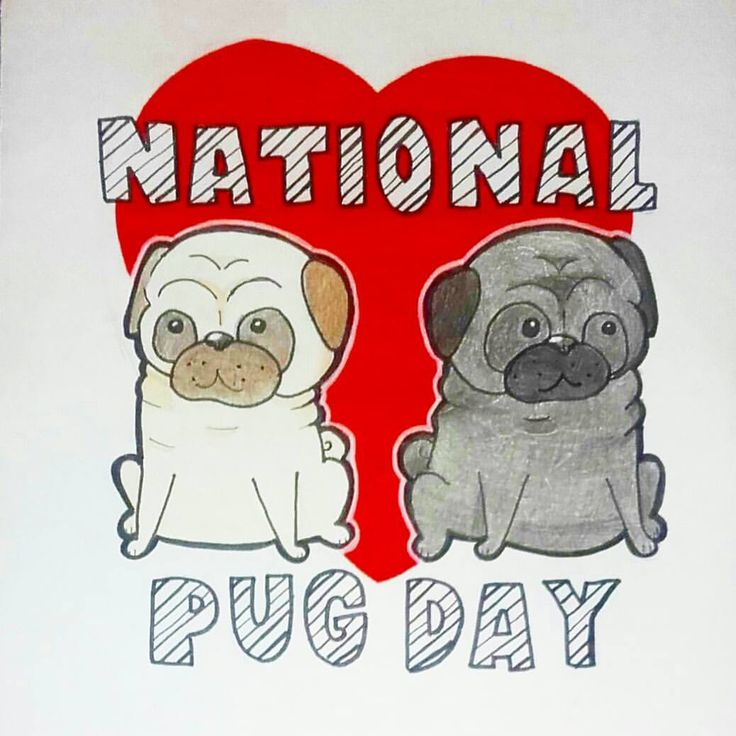 """39 Likes, 2 Comments - Bethan  (@ralphie_triceratops) on Instagram: """"Happy National Pug Day to all my dog lover out there #pug #pugsofinstagram #pugs #beige #beigepug…"""""""