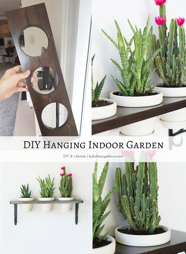 Learn how to make this pretty little hanging indoor garden. Great solution for an indoor herb garden if you have a spot that's sunny enough! Also a great way to keep your plants away from kitties.