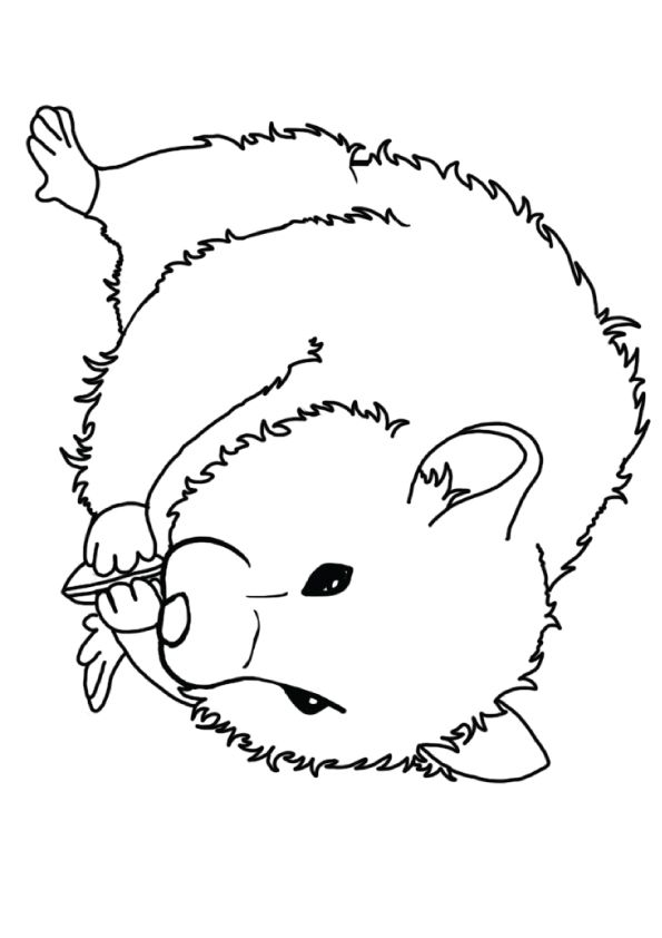 Print Coloring Image Momjunction Bear Coloring Pages Coloring Pages Flower Quilt