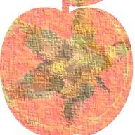 autumn apple detail