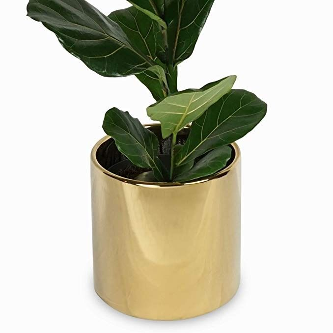 Plant Stands And House Plants 7 Inch Gold Modern Planter Add New Life To Your Home And Make Any Room Look With Images Indoor Plant Pots Terracotta Flower Pots Plants
