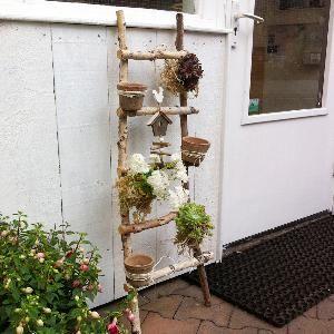 25 beste ideen over Houten ladder inrichting op
