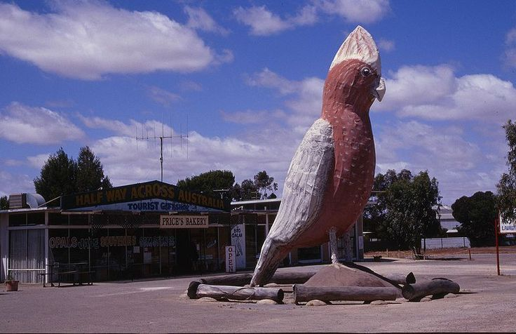 """Residing at the """"Halfway Across Australia Tourist Shop"""" at Kimba, South Australia, the Big Galah was built from fiberglass over a steel frame by Robert Venning, and was opened in 1993. Modelled on the Galahs that frequent the region, it stands at 8 metres (26 ft) high and 2.5 metres (8 ft 2 in) wide, and weighs in the vicinity of 2.3 tonnes (2 long tons; 3 short tons"""