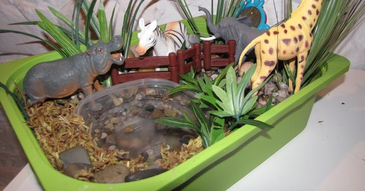 THE ZOO  I have made up this sensory bin for our zoo unit:     The bin consists of pea gravel (much cheaper if you buy a big bag from a hom...