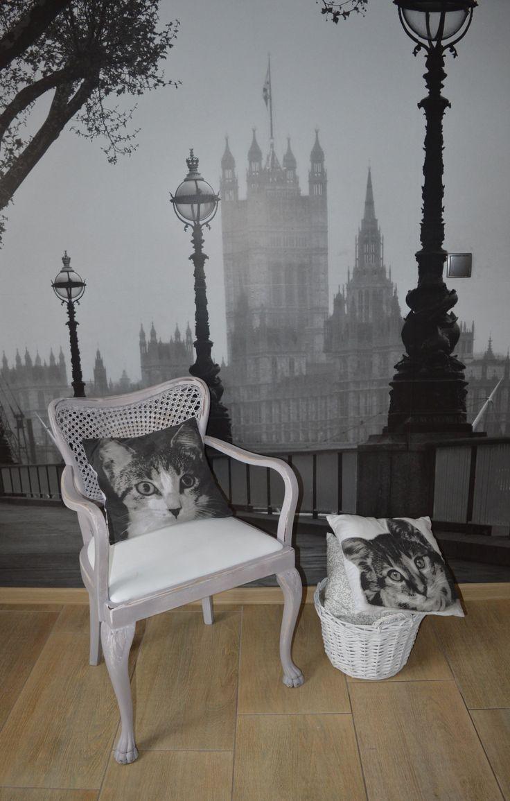 Chair  by annie sloan, paris grey