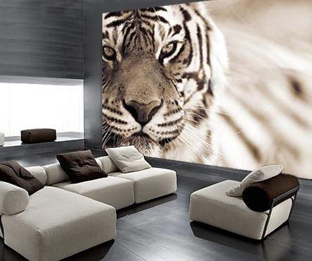 Met dit fotobehang van een tijger die je aankijkt, zorg je voor een indringende blik die altijd de kamer inkijkt. Bijzonder!