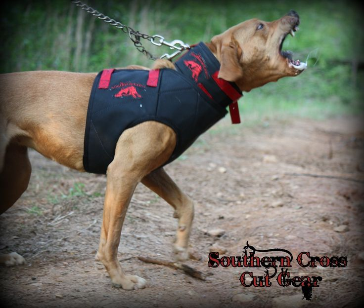 Dirty Dawg Strike Hog Dog Vest- $65  Light weight and mobile protection ideal for hot weather conditions.  The Dirty Dawg Strike/Bay vest provides serious protection to the most vital areas, while maintaining a low profile that allows for full mobility and perfect hot weather protection.  Ideal for Strike/Bay dogs.