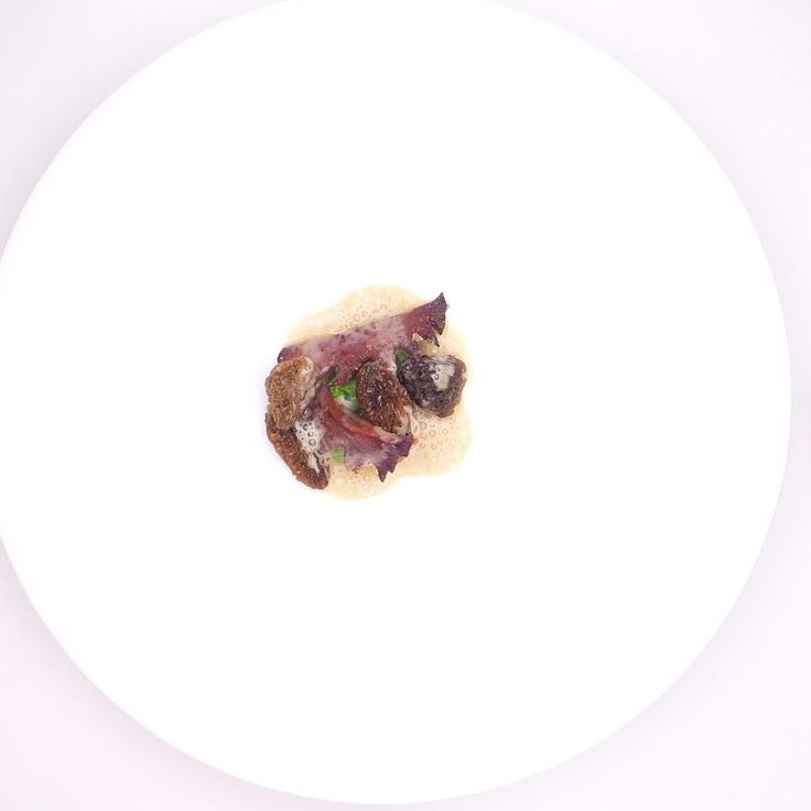 Wouter  Keersmaekers   De Schone Van Boskoop. Archiving Food Photography   Gastronomy