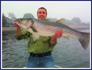 21 best striped bass fishing north east images on for Fishing supplies near me