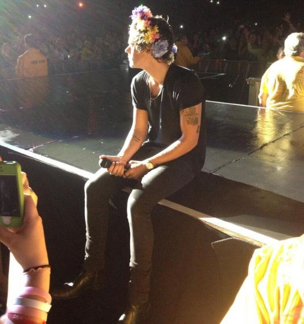 18 best images about Harry styles on Pinterest | Harry ...