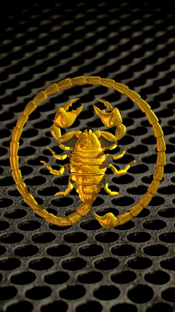 Large Circle Scorpion On Grill IPhone Wallpaper