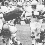 Bengal Running Back Paul Robinson