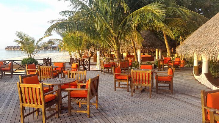 Мальдивы. Сельскохозяйственный остров поставляет продукты для ресторанов отелей.