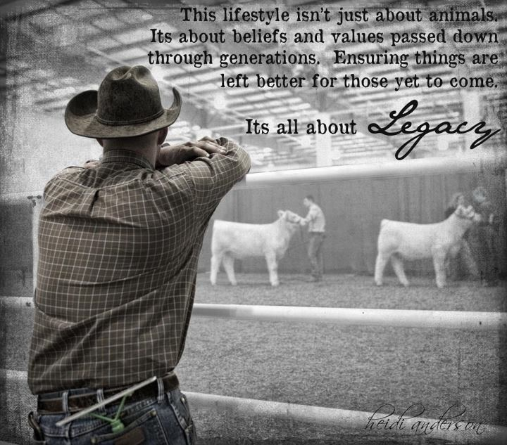 Legacy Livestock Photography. True