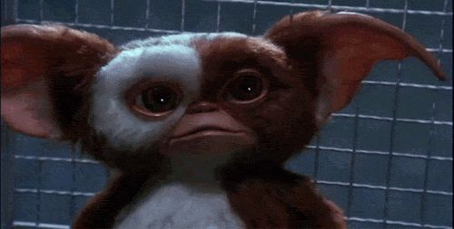Have An Adorably Terrifying Tuesday With These 'Gremlins' GIFs