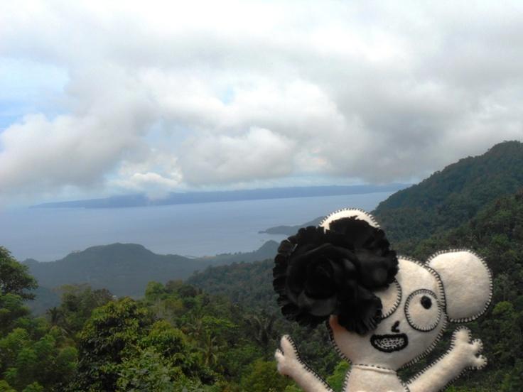 view at Pondok Bukit Putung , Bali, Indonesia