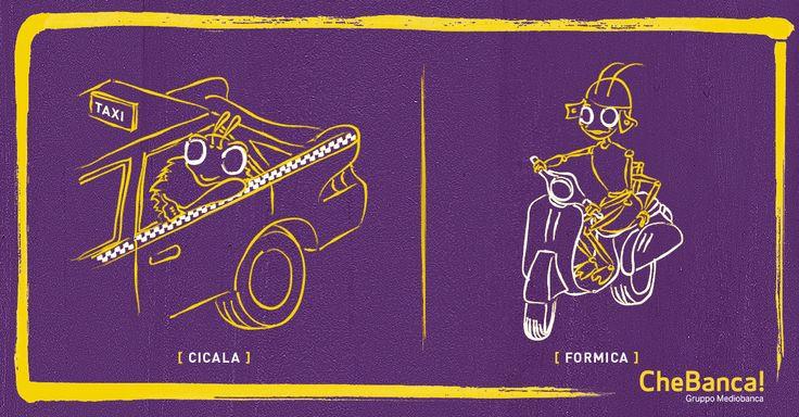 Cicala vs Formica: taxi tutte le sere per tornare a casa o scooter nuovo per Natale?