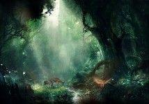 Fantasy Forest Ultra HD 4K Wallpaper