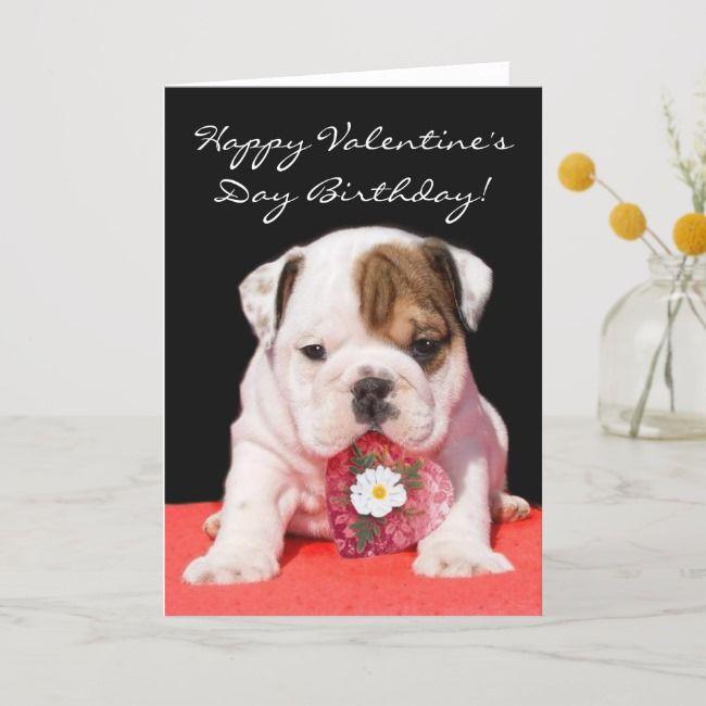 Happy Valentine S Day Birthday Bulldog Puppy Card Zazzle Com