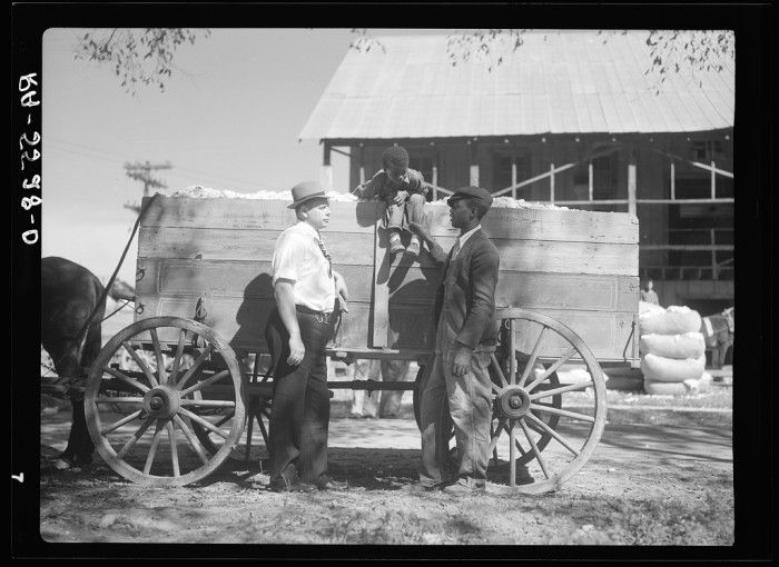 15 Rare Photographs Show The History Of The Tobacco Industry In North Carolina
