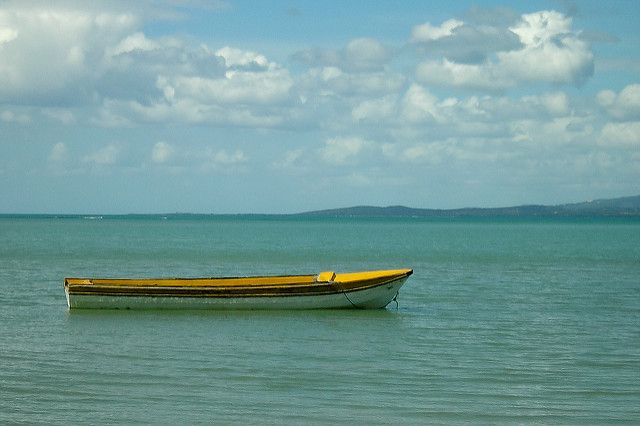 Fishing boat offshore at parottee jamaica by bithead for Jamaica fishing charters