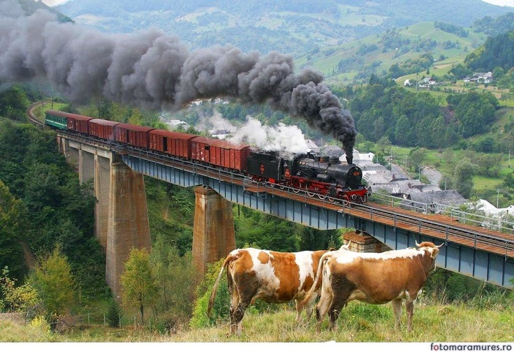 Via Why I Love Romania Facebook Page - Romuli, Salva - Vișeu railway