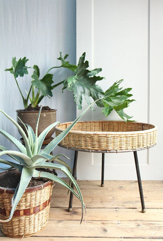 Mid Century Wicker Planter / Albini Style, Wicker, Plant Stand, Tripod, Table…