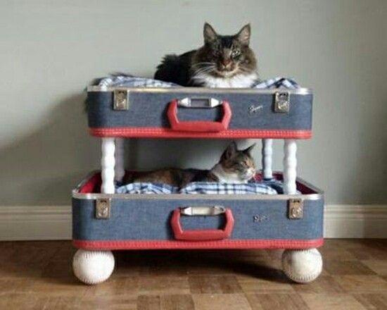 Lits superposés pour chats (convient aussi pour chiens de sac à main): valises dont le couvercle a été découpé, balles de tennis et petits piliers en plastique, tout de récup.