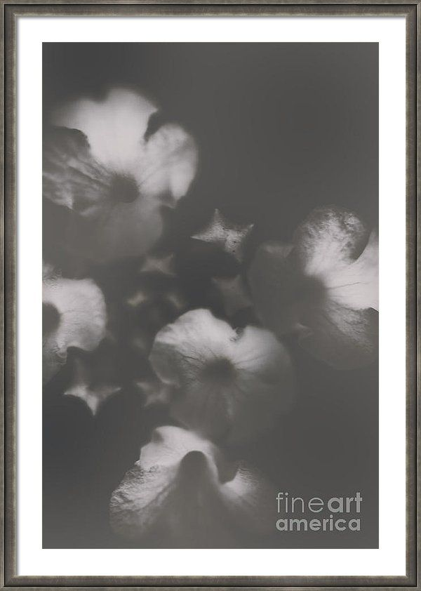 Vintage Framed Print featuring the photograph Ornate Colourless Weathered Wild Flowers by Jorgo Photography - Wall Art Gallery