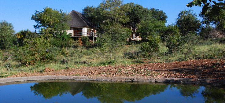 Mbizi Bush Lodge, Greater Kruger