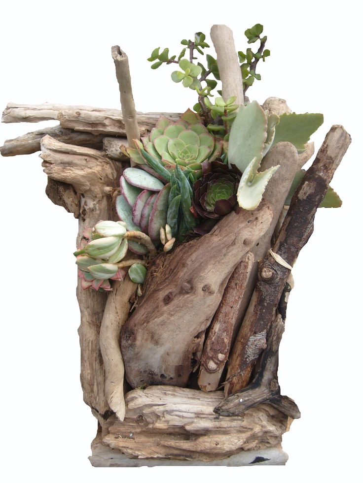 17 Best Images About Crafts Driftwood On Pinterest