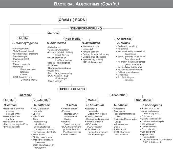 688 best Pharmacology information images on Pinterest Nursing - food poisoning duration