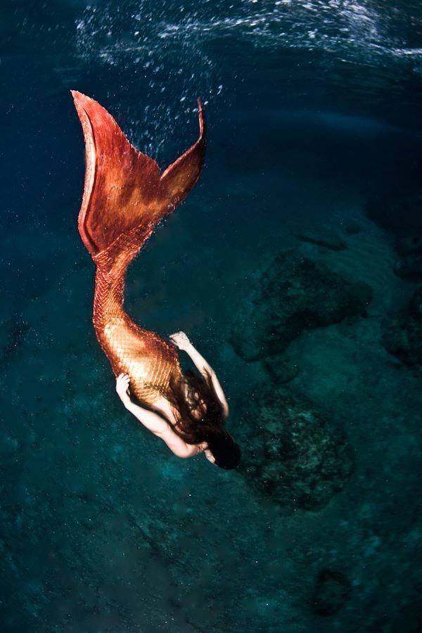 mermaid tail dive