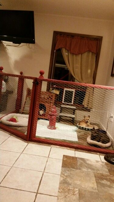 My Indoor dog area with doggie door/window