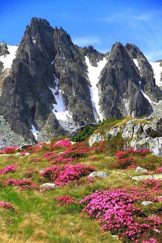 Retezat National Park, Romania - Why I Love Romania on Facebook
