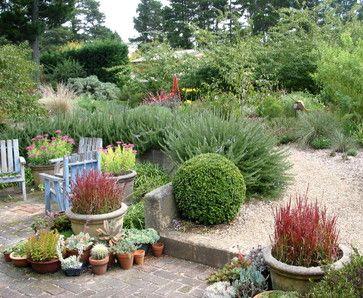 See a lush Australian Garden that needs little water. Lathouris Garden - traditional - landscape - sydney - Arthur Lathouris Garden Designer