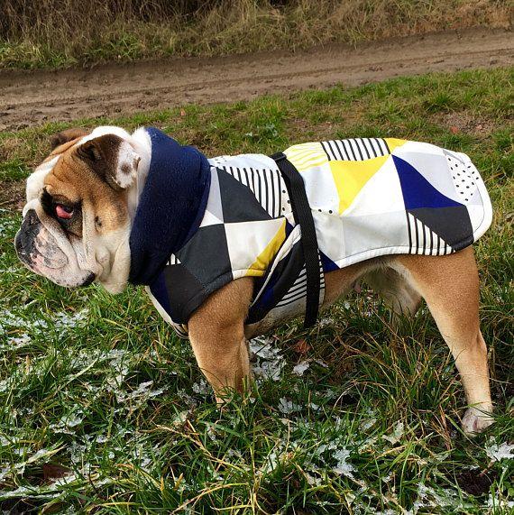 English Bulldog Coat English Bulldog Waterproof Dog Coats